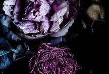 P.S.- Passion for Purple...