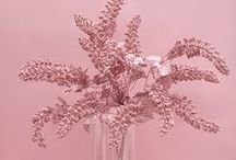 P.S.- Think Pink...
