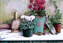 Cyclamen Art Decorations & Design / Art, decorations and design inspired with or through those beautiful cyclamen.