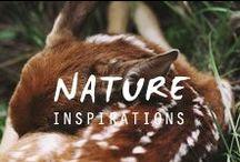 -▲ NATURE ▲-