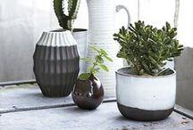 Flowerpots and Vases