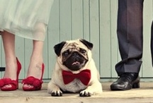 Furry wedding attendants