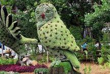 garden's sculptures-topiary