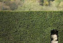 a-ext | garden