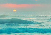 oceana / Ocean / by Love_and Hope