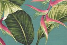 tropical interest / Palm, Beach, and Juice