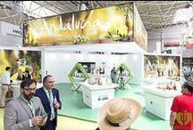 Expoliva 2015 / Aceite de Oliva Virgen Extra