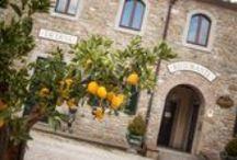 Hotel Borgo il Melone / At the foot of the beautiful Cortona, in the heart of the green Tuscany, born a Resort of enchanting beauty.