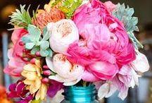 flowers / by Mirva