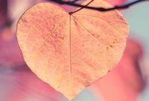 Lovely!♡