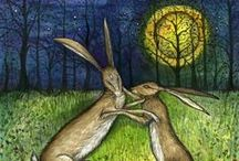 Magical Moon & Hares
