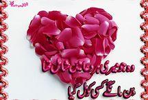 Iqra Sajjad Sheikhabdi32 On Pinterest