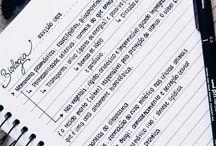 Handwriting and study tips