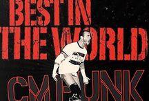 CM Punk / by Britnee' Tomlinson