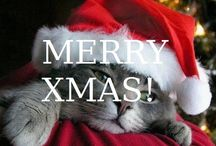 CHRISTMAS!!!!!!! / Let celebrate the best time the year