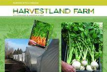 Harvestland Farm / We're an organic farm with a mission to help provide jobs for those who have a disadvantage. https://www.facebook.com/AspireHarvestlandFarm