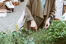 People & plants