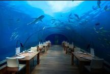 Beautiful Places to Eat