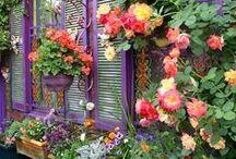 Dreamy Gardens / Tranquility