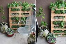 Pallet(able) Projects / Anything and everything you can do with pallets ~ for the home garden