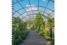 Notebooks / A selection of assorted high quality photographs printed on the cover of notebooks. (Affiliate links)