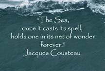Treasures Of the Sea / by Ms. Badillo