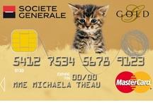 Cartes Collection Animaux / Pour les amis des bêtes, avec des services conçus pour leur bien-être.