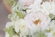 Wedding Bouquets / Our favorite selections of wedding bouquets.