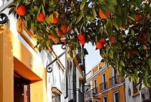 Places to be - Seville, Spain / Places to visit and things to do in Seville