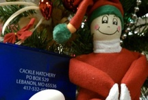 "Egg Noggin / Egg Noggin is our ""Egg on The Shelf"" Elf that gets into mischief on a nightly basis here at Cackle Hatchery. He is always trying to help and ends up leaving little messes around. :)"