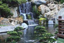 Moor Earth Gardens of Earth Eden / Elements to My Garden