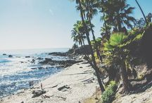 Ocean ✨