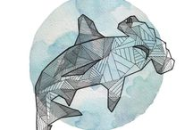 Hammerhead sharks ❤️