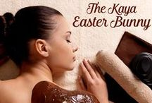 Kaya Spa / Kaya Spa is Tribe Hotels luxurious treatment centre, dedicated to taking your stresses and problems away, we centre our treatments around the needs of our clients and personalise them for the optimum results. Kaya Spa is open 8.30am to 9pm daily.