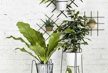 Plant stand. Vintage style. / Kwietniki. Styl vintage.
