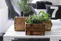 Wooden plant pots / Drewniane osłonki na donice.
