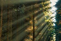 // I Love Sun