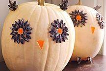 Halloween Spooks!