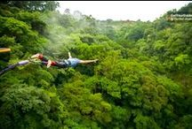 Go Costa Rica / Snorkelling and paradise beaches, hiking in cloud forests... Costa Rica is as close to Shangri-La as it gets.