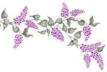 Florals / ...backgrounds, wallpaper, fabric, stencils, etc. / by Carmen Williams