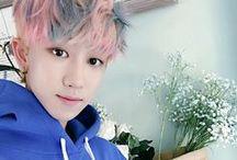 세븐틴's minghao ♥ / my cute chubby little white ice cream