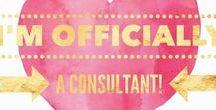 LuLaRoe Consultant Information