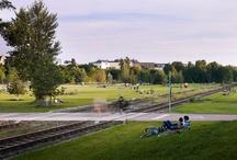 Landscape - Park