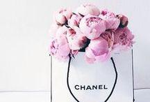 La vie en rose /  All things feminine.