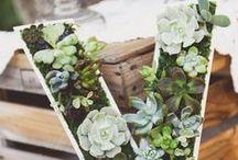Garden Weddings / A garden is a beautiful place for a wedding.