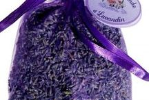 lavender / lavender growth and products