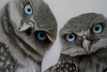 OWLS / I dedicate this board to my loving Mother, She loved owls.  She would always tell me, they were a sigh of good luck. / by Lourdes Tamayo Prieto