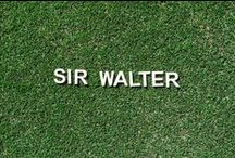 Sir Walter Buffalo / Sir Walter buffalo is Australia's favourite lawn; it's easy to maintain, stays green all year round and is very drought tolerant.