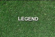 Legend / Legend is a wear resistant, couch variety designed for high impact environments. This fine leaf's hard wearing qualities make it the turf of choice for sporting applications, often seen in high profile sporting arenas.