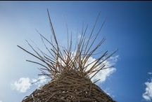 Pineapple  Lounge / Bamboo Structure